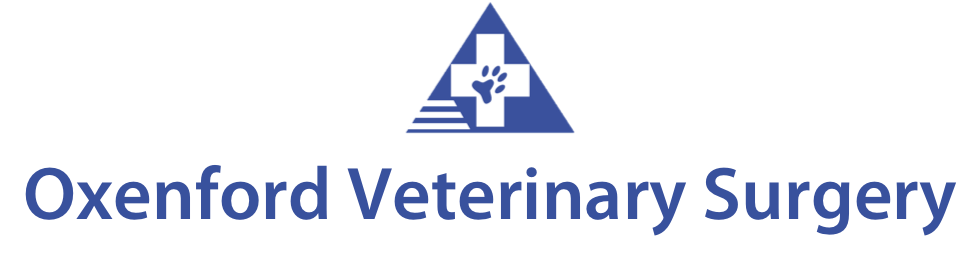 Oxenford Veterinary Surgery